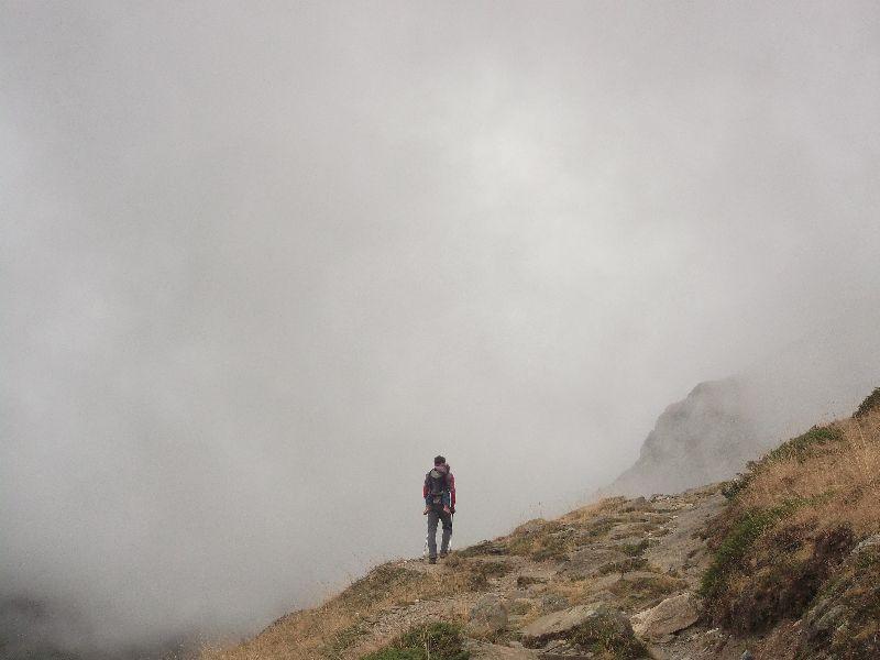 Mis cositas en la niebla