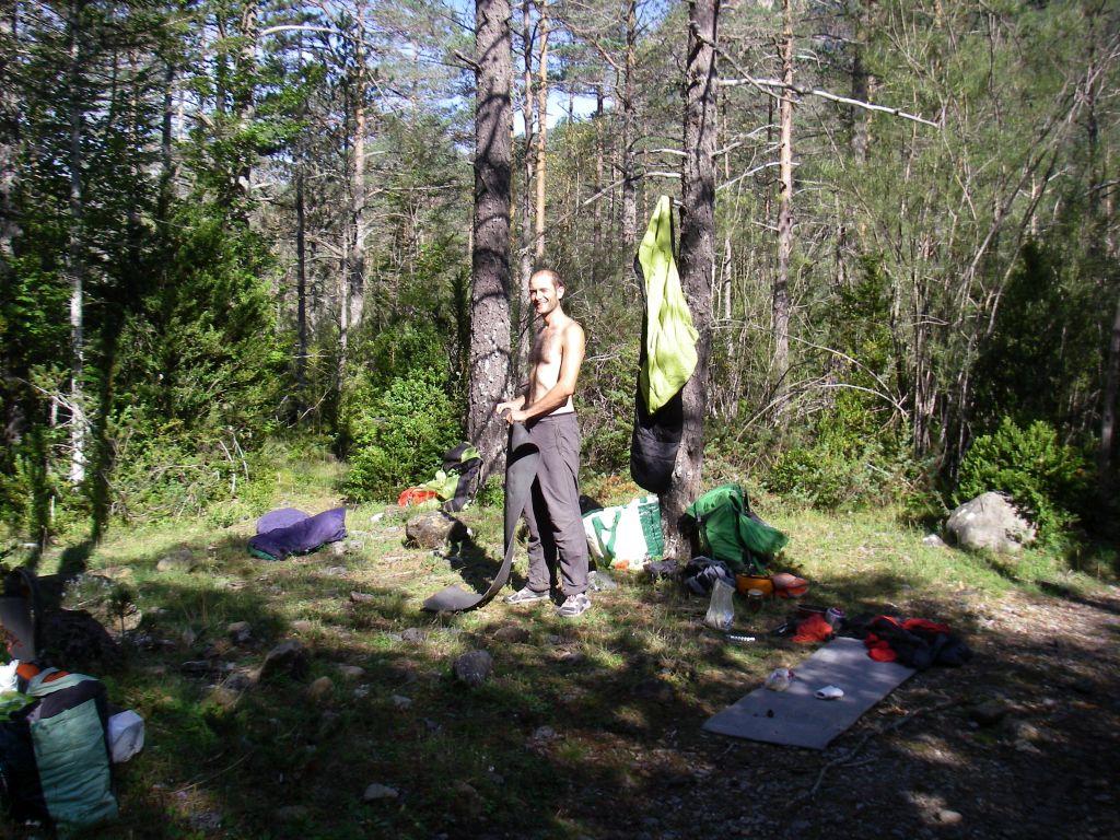 Mañanas en el bosque
